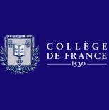 L'histoire de l'histoire de l'art en France