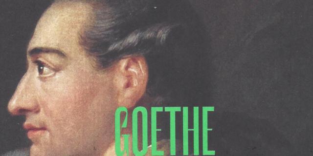 Goethe devant la cathédrale : «l'unité d'une sensibilité»